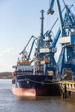 Déchargement au Port ce Commerce de Lorient ©Fanch Galivel
