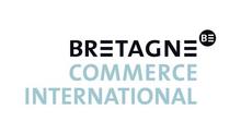 Logo BCI_emailing